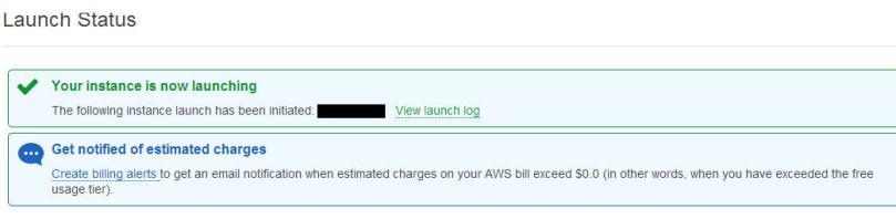 aws-launch-status