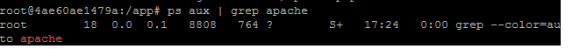 verify_apache_server_status_in_docker