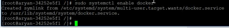 sudo systemctl enable docker